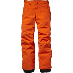 Anvil Ski / Snowboard Pants